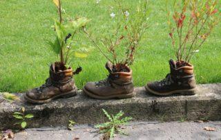 Blumen in alten Schuhen